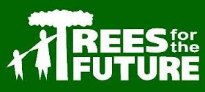 trees-for-the-future-logo2
